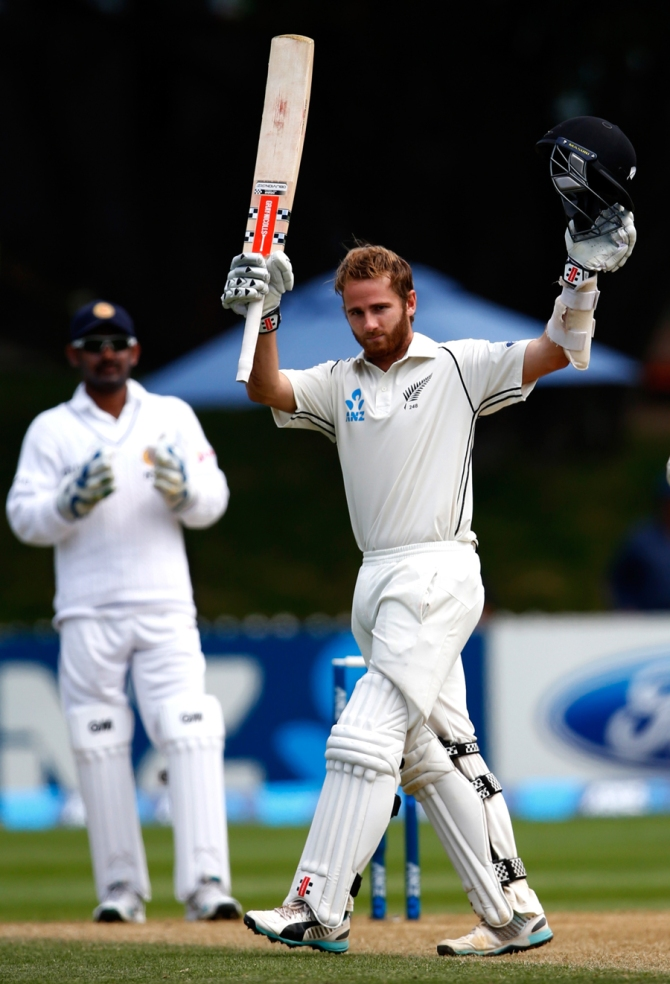 Williamson celebrates after scoring his maiden double century